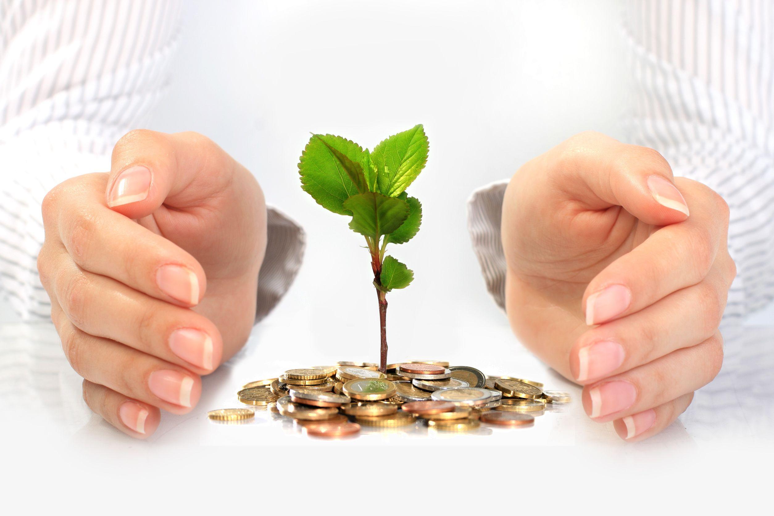 Как сделать прибыль в бизнесе